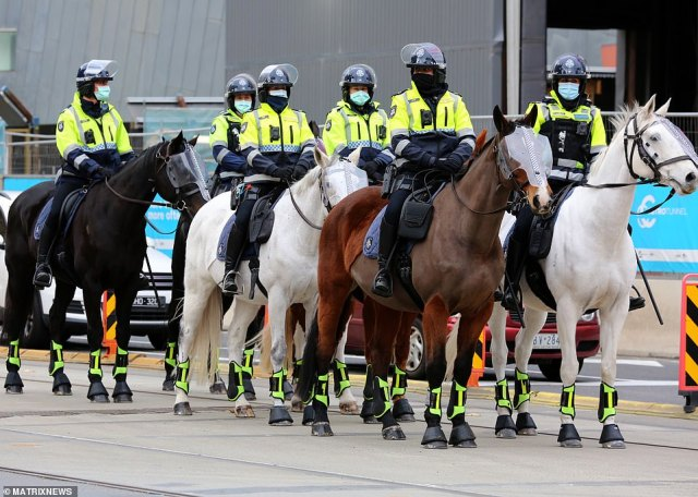 Mounted police in Sydney with hi-vis and protective headgear which was also fitted to their horses (pictured)