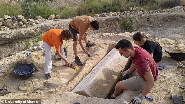 Romans abandonedLos Villaricos by the fifth century, when the Visigoths repurposed its main reception room as a Christian basilica and the adjoining patio as a necropolis for coffins. Pictured: The team works to excavate the sarcophagus near Mula