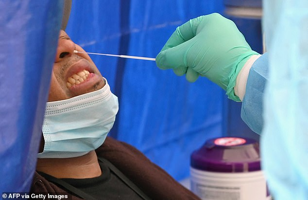 New York and California are the first states to mandate that public workers get COVID-19 vaccines or undergo weekly testing as cases rise due to the Indian 'Delta' variant. Pictured: A healthcare worker takes a nasal swab sample to test for coronavirus in New York City, May 2020