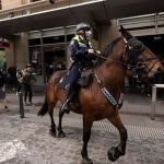 Hunt for men accused of throwing pot plants at mounted police during Sydney's anti-lockdown protest 💥👩💥