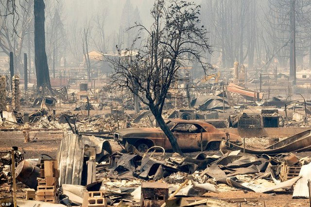 The skeleton of a tree is seen amid homes and cars destroyed by the Dixie Fire in Greenville. Firefighters said 100 homes were destroyed in the town of 800 people