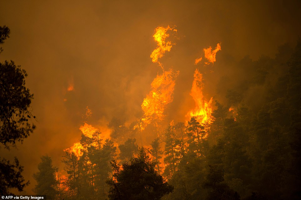 The fire on Evia, an island of forested mountains and canyons laced with small coves of crystalline water, began August 3 and cut across the popular summer destination from coast to coast while burning out of control for five days