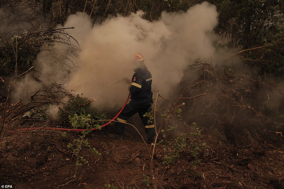 A firefighter battles flames during a wildfire at the village of Istiaia in the island of Evia, Greece
