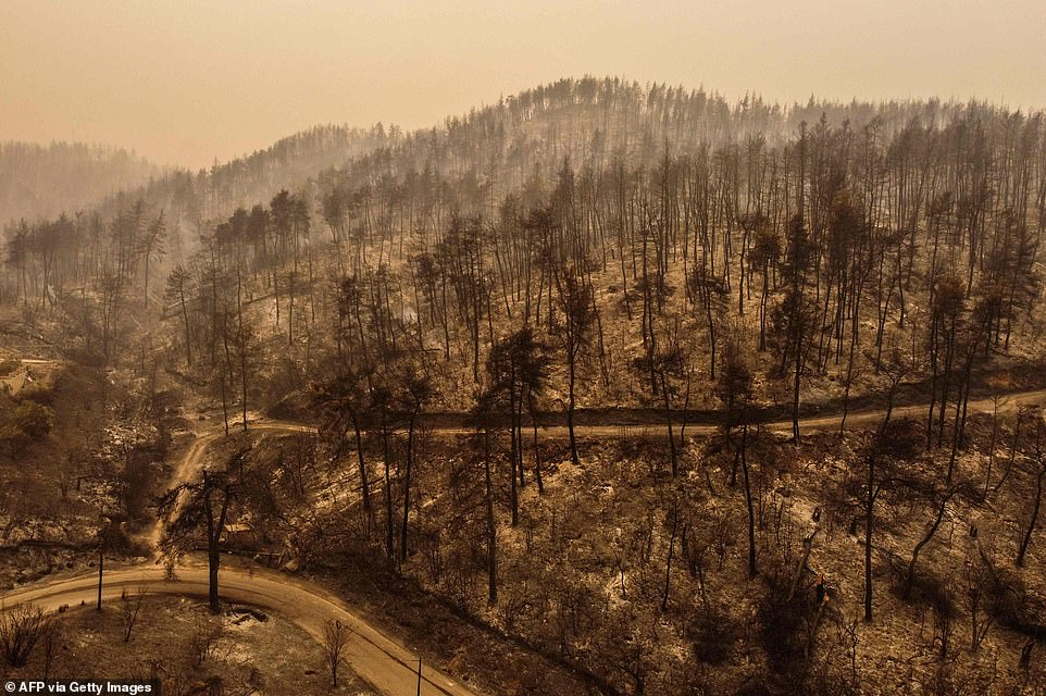 A huge swathe of countryside outside the town ofPefki is shown burned to a crisp after wildfires burned through