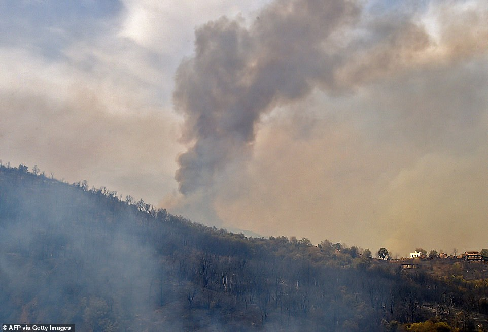 Algeria has become the latest Mediterranean country hit with wildfires after over 31 blazes broke out amid blistering temperatures and tinder-dry conditions, officials said on Tuesday