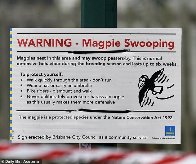 A warning sign is pictured tellingGlindemann Park users to 'walk quickly through the area' and to get off their bike and walk if they are cycling through the park