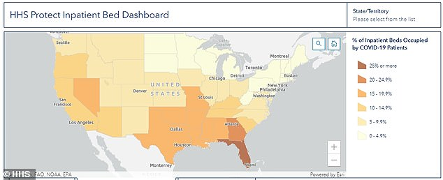 Over 30 percent of patients in Florida hospitals are sick with Covid, the highest share of any state