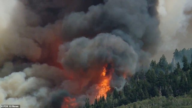 Parleys Canyon Fire is very hot and is endanger several counties, homes, businesses, and power lines. Residents have been asked to reduce their usage of mobile phones to keep the network available for emergency personnel