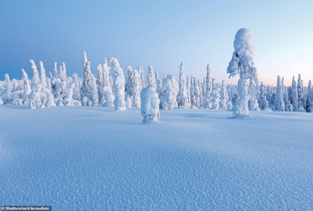 LAPLAND, FINLAND: According to Martin, in February, the coldest month, the temperature in Lapland can dip to -30C (-22F), but usually hovers around -10C (14F). She says: 'Low lying areas are covered by bogs, while pines and spruces cloak the low fells. The tops of the fells, typically no more than 1,300m (4,265ft) above sea level, are usually treeless'