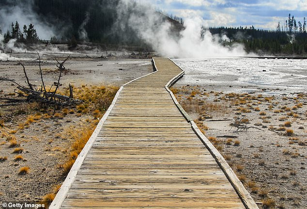 , Connecticut woman who walked off-trail and over a geyser in Yellowstone sentenced to a week in jail, The Today News USA