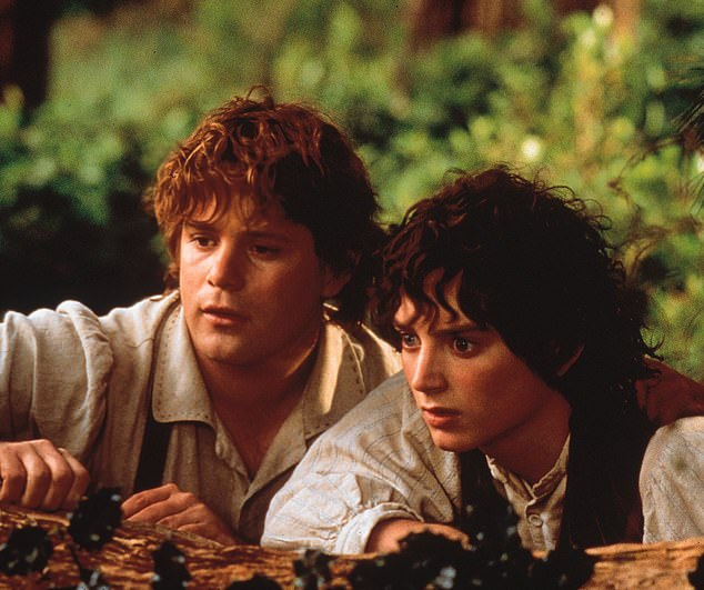 Making his mark: Astin would score the role ofSamwise Gamgee in the Lord Of The Rings films beginning with the original, which filmed in 2000, some seven years after the initial photobomb; he is pictured in a scene with star Elijah Wood