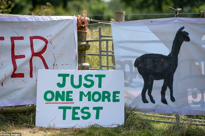 This week, more than a dozen vets said they have 'grave reservations' about the two positive tests Geronimo returned in 2017 and that they 'may well represent a false positive'