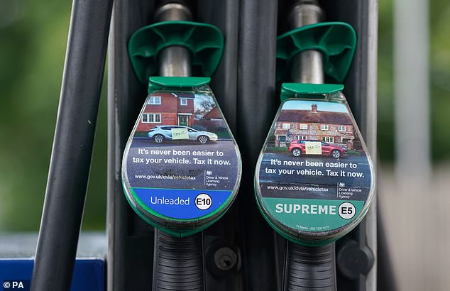 Official estimates suggest 700,000 cars are not compatible with the new E10 fuel (file photo)