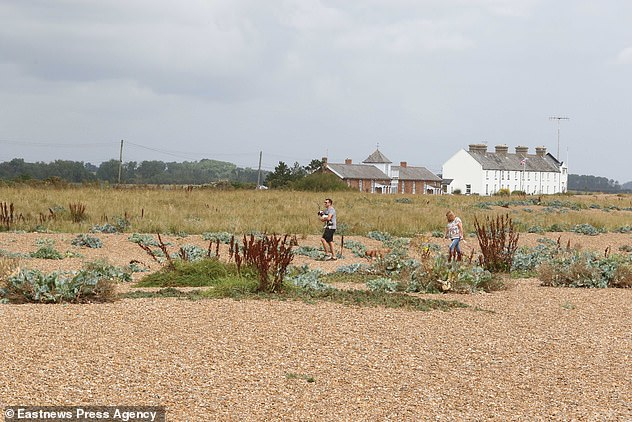 The area is known locally as a beauty spot and features beaches as well as grassland