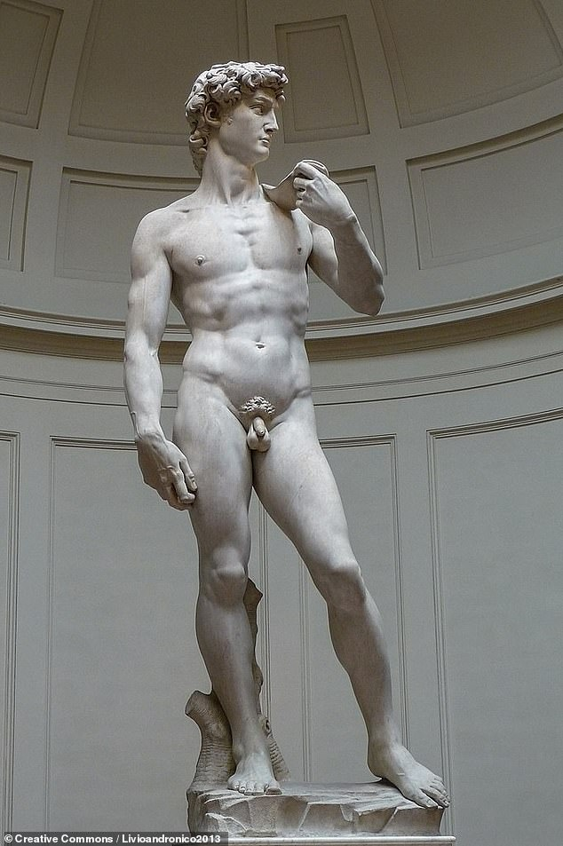 The researchers are presently also working on a study of Michelangelo's fingerprints, which they hope will shine more light on the great artist's physical characteristics. Pictured: Michelangelo's masterpiece sculpture of the biblical David, which stands on display in theGalleria dell'Accademia, Florence. At17 feet, David was three times taller than his creator