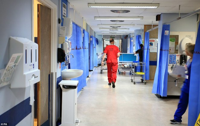 The number of patients waiting for elective surgery and routine treatment in England is now at a record high of 5.5million. The number is estimated to reach 13million by the end of the year without action (pictured: An NHS hospital ward)