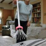 Amazon shoppers are snapping up this spider catcher for spider mating season september💥👩💥💥👩💥
