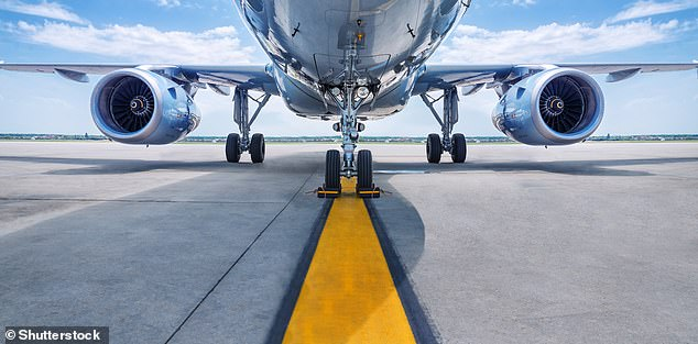 The aviation industry accounts for around 2 per cent of global greenhouse gas emissions
