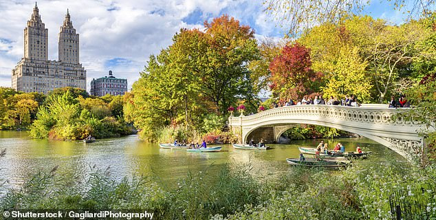 Book a hotel near to New York's Central Park to enjoy some greenery while on a busy city break