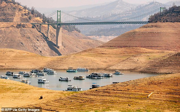 Nearly half of the lower 48 was experiencing drought conditions by August 31, NOAA scientists reported. Pictured: Lake Oroville which is currently at 23 percent of its capacity
