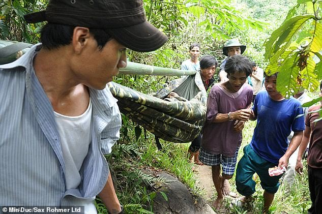 Weak: Ho Van Thanh is pictured being stretchered through the jungle after they were discovered
