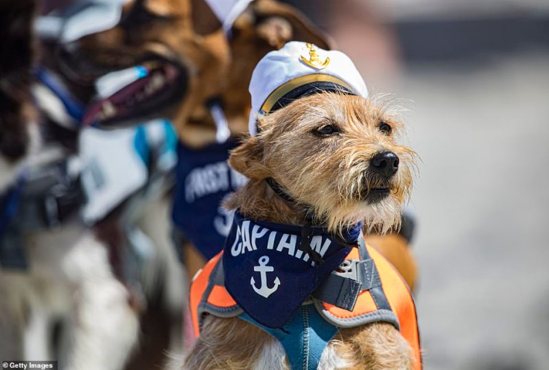 One competitor sported a sailor's outfit