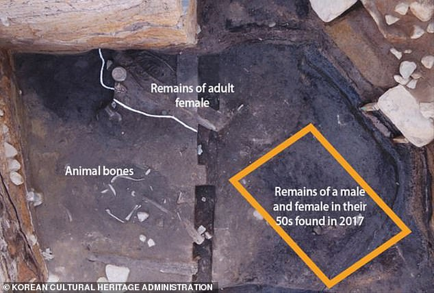 The body of the young woman, in her twenties, was found less than two feet from the remains of a male and female in the 50s buried up to 100 years later