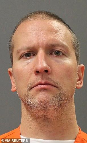 PICTURED: Former Minneapolis Police officer Derek Chauvin in custody