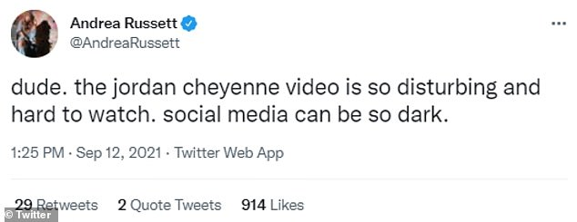 On social media, users lambasted Cheyenne's behavior and called the morality of parenting vlogs as a whole in to question