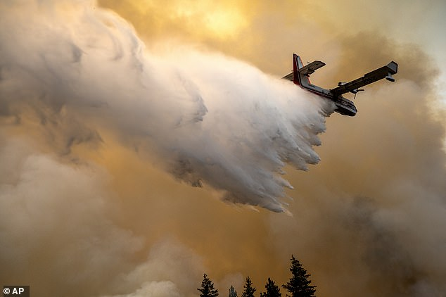 A scoop plane drops water onto a burning ridge where a fire line had been created by crews of wildland firefighters, Monday, July 12, 2021, at the Lick Creek Fire, south of Asotin, Washington
