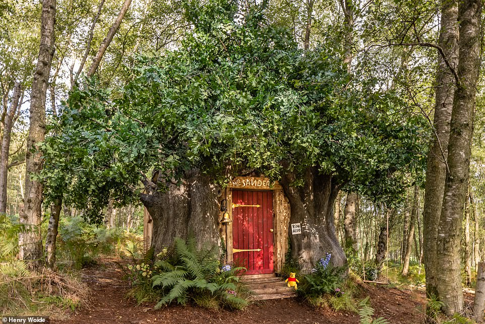 The enchanting 'Bearbnb', pictured above, was inspired by the original Winnie the Pooh house