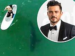 Orlando Bloom proves to be fearless as he paddleboards with a great white SHARK off the Malibu coast