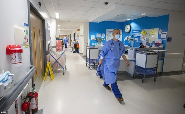 Despite the recent flattening off in cases and little sign of a post-summer surge, modellers from a Sage sub-committee claimed daily hospitalisations could reach almost double their January peak (file photo)