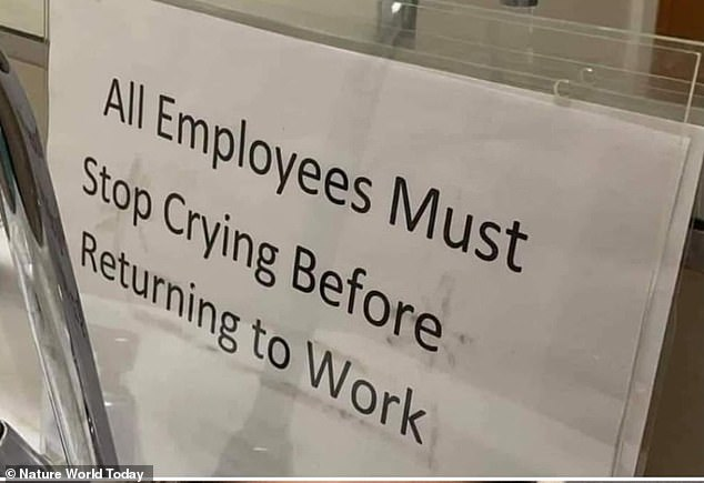 No time for tears! A gallery collated by Nature World Today shows what some people have to put up with in workplaces around the world when there's an overbearing boss in charge