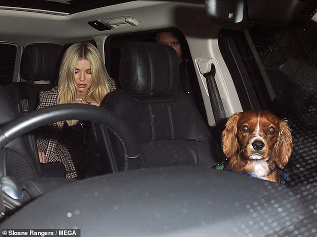 Cute: Toff wasaccompanied by her dog Monty during the evening