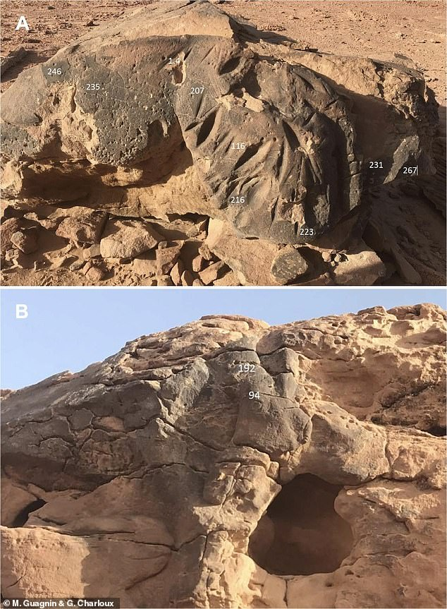 State-of-the-art dating methods have shown estimates to be 6,000 years old, with the sculptures likely dated to around 6000 BC, when the now arid deserts of northern Saudi Arabia 'a savanna-like grassland scattered with lakes and trees' ' Were.