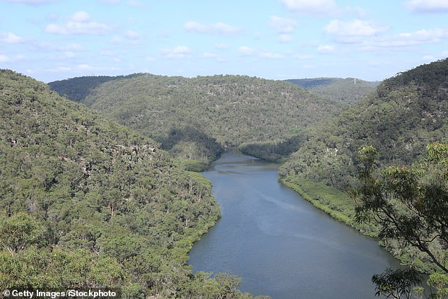 The great escape: The Neverfail Bay block, which last sold for $575,000 in 1999, was purchased by the Emdurs for $1 million. Pictured: Berowra Waters