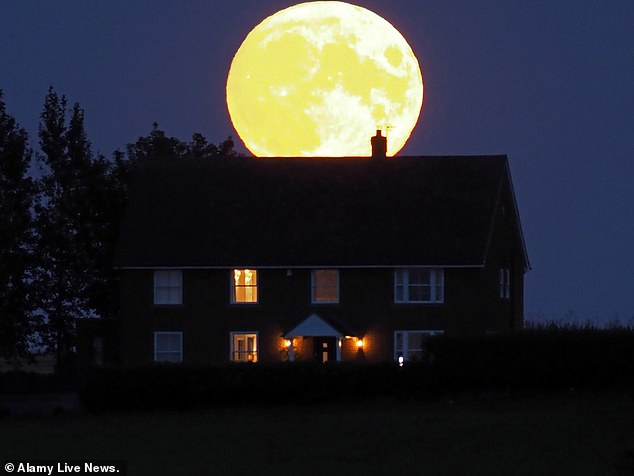 The Harvest Moon is set to illuminate the night sky on Monday, September 20, which will be the closest full moon to the autumnal equinox that falls on September 22 in the Northern Hemisphere.  Pictured: Eastsuch in Kent on September 20, 2020