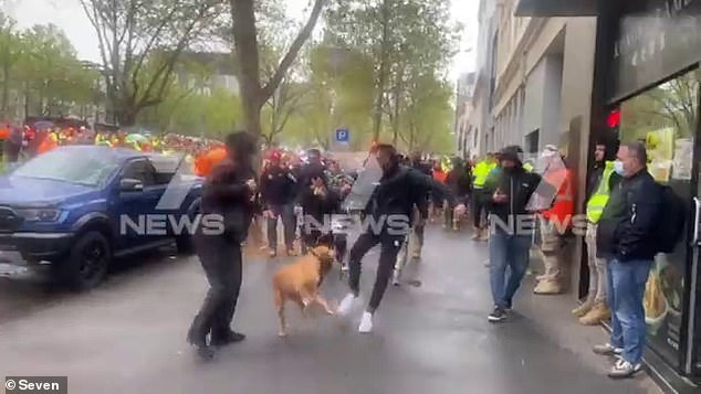 A man was caught on camera kicking a dog during a protest outside CFMEU headquarters in Melbourne on Monday