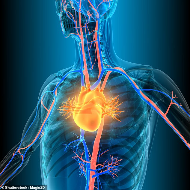 Researchers at Georgetown University Medical Center worked with 72 volunteers who suffered a stroke within three weeks of the trial.  stock image