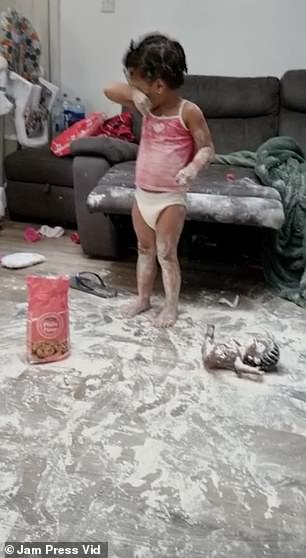 But just a few moments later, the cheeky youngsters had climbed up onto the kitchen table and grabbed the bag of flour, spilling it everywhere (pictured)