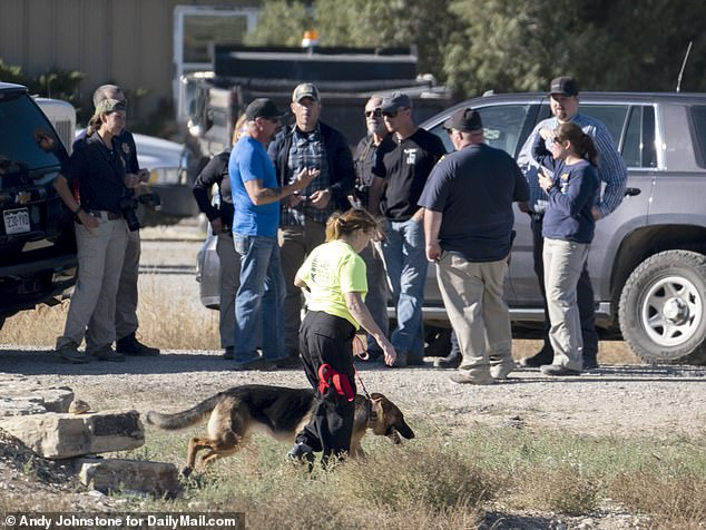 Cadaver dogs are brought back to the scene where Chaffee County Sheriff's officers, FBI and CBI were searching for Suzanne Morphew in May 2020