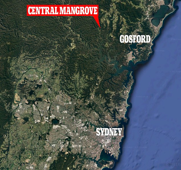The car crashed shortly before 10pm on Tuesday while travelling on Wisemans Ferry Road in Central Mangrove on the New South Wales Central Coast