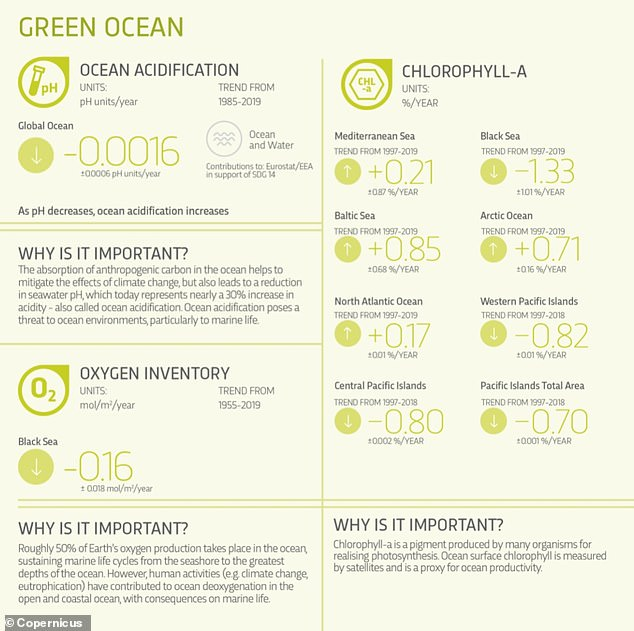 The green ocean describes the biological and biogeochemical state of the ocean, including, for example, chlorophyll-a concentrations and nutrient uptake, as well as ocean acidification and deoxygenation.