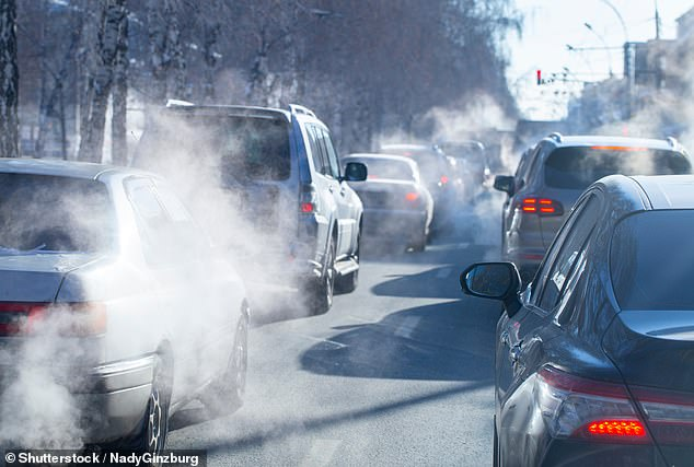 WHO issued air quality guidelines to protect people's health, calling on countries to ensure that major air pollutants do not rise above a certain level.  As per the recommendations, guidelines for particulate matter smaller than 2.5 microns (μg/m³) should not exceed the state level annual level of 5 micrograms/m – half the level included in an environment bill to be passed through Parliament.