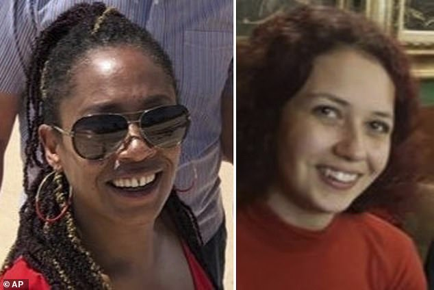 Meanwhile sisters Nicole Smallman, 27, and Bibaa Henry, 46, were stabbed to death in a Wembley park by 19-year-old Danyal Hussein on June 6 last year