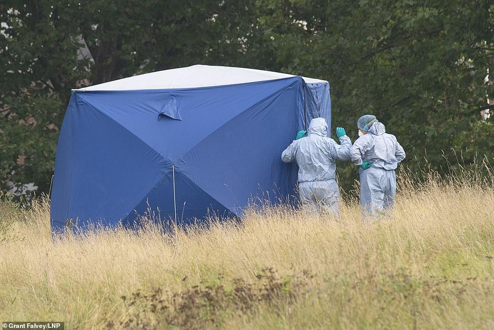 , Sabina Nessa 'hit over head near her home', The Today News USA