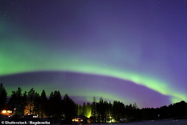 Head to the Finnish ski resort of Levi, pictured, to catch a glimpse of the northern lights