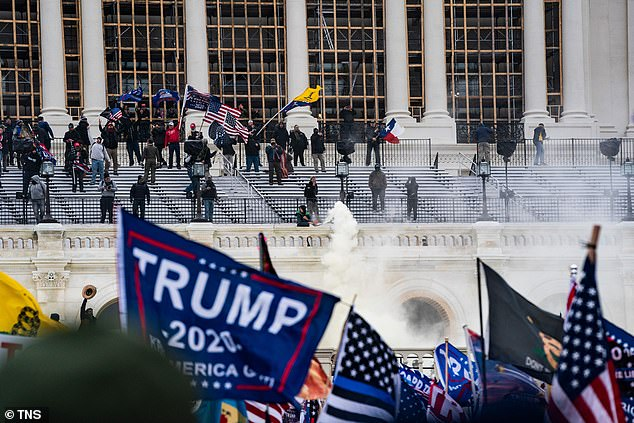 The Thin Blue Line flag was seen being carried carried by rioters during the January 6th attacks on the US Capital (pictured)