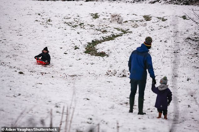 Arctic Maritime or Polar Continental would help bring Britain a snowy Christmas (stock image)